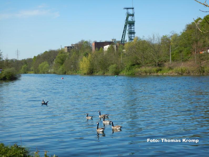 Ruhr bei Überruhr 2