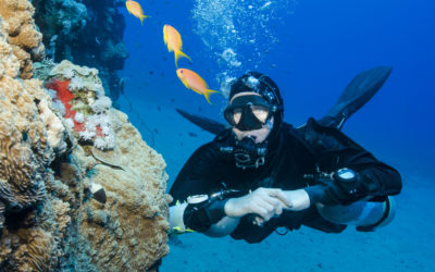 Sidemount Diving Instructor